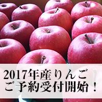 2017年産りんご予約受付開始です。