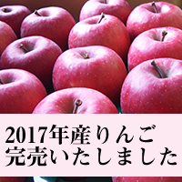 2017年産りんご完売御礼!