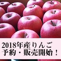 2018年産りんご予約・販売開始!
